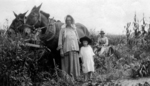 Amish Pioneers